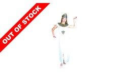 FEMALE CLEOPATRA COSTUME For Vintage Hen Party Ideas