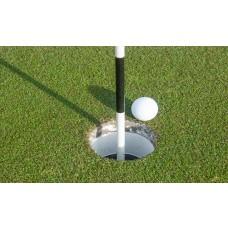 Arden Championship golfing