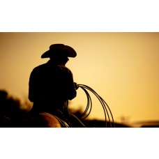 Adventure With a Cowboy Thrill for Three